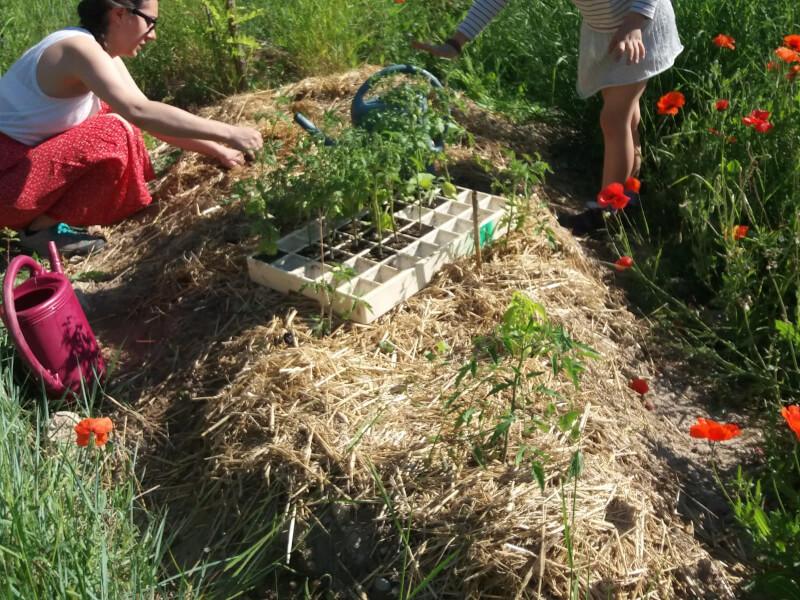Read more about the article Rendez-vous des jardins du dimanche 21 mars